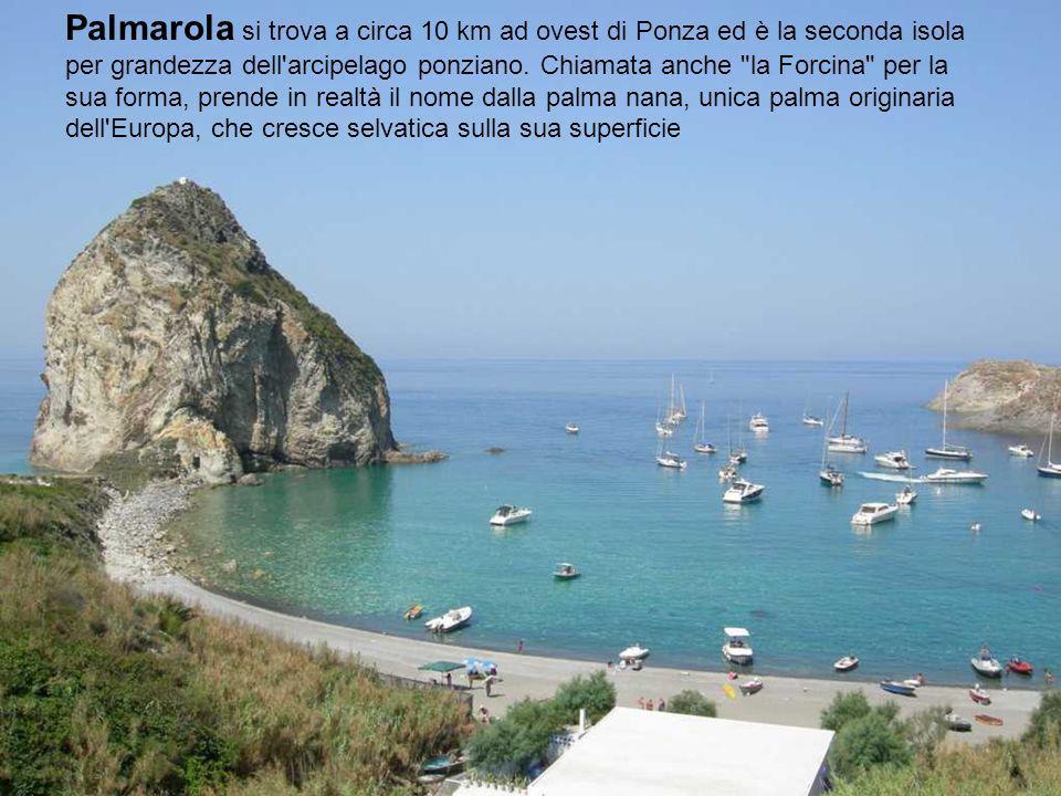 Le isole Pontine Palmarola Ponza Gavi Zannone Ventotene Santo Stefano Santo Stefano Mar Tirreno