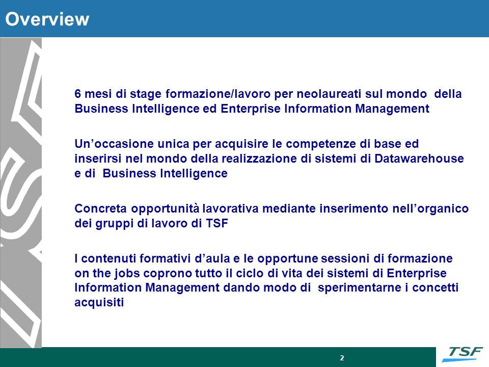 2 Overview 6 mesi di stage formazione/lavoro per neolaureati sul mondo della Business Intelligence ed Enterprise Information Management Unoccasione un