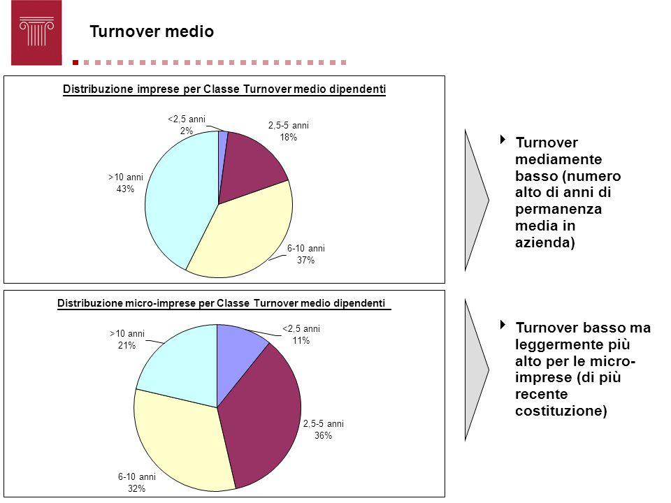 Turnover medio Turnover basso ma leggermente più alto per le micro- imprese (di più recente costituzione) Distribuzione imprese per Classe Turnover me