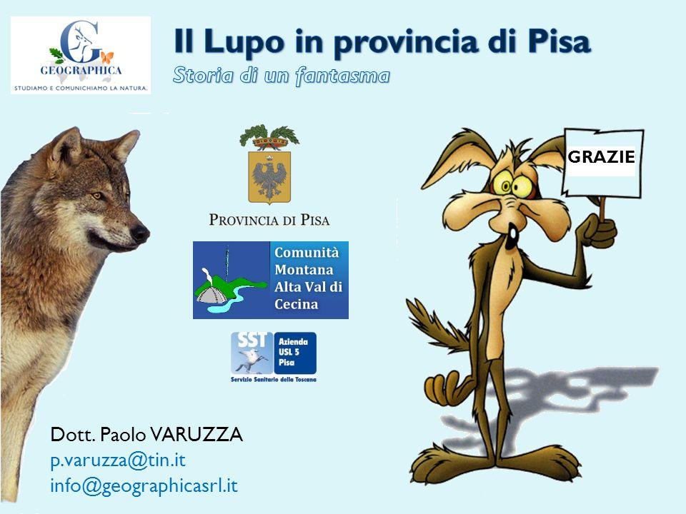 GRAZIE Dott. Paolo VARUZZA p.varuzza@tin.it info@geographicasrl.it