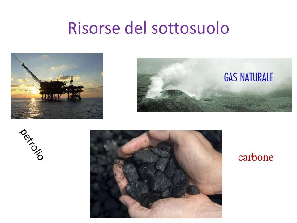 Risorse del sottosuolo petrolio carbone
