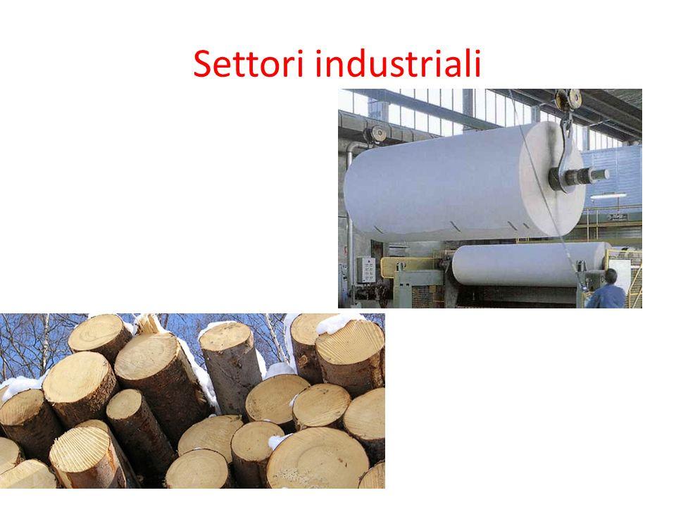 Settori industriali