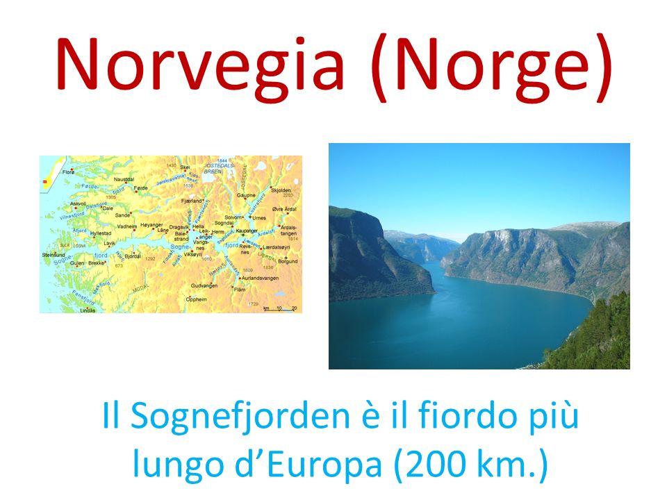 Il Sognefjorden è il fiordo più lungo dEuropa (200 km.) I l S o g n e f j o r d e n è i l f i o r d o p i ù l u n g o d E u r o p a