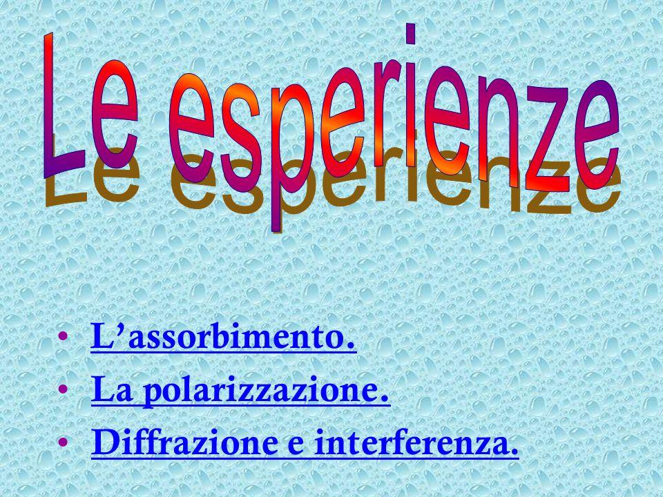 Lassorbimento. La polarizzazione. Diffrazione e interferenza.Diffrazione e interferenza.