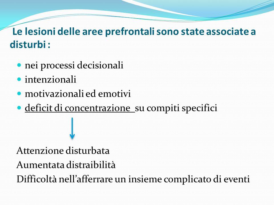 Le lesioni delle aree prefrontali sono state associate a disturbi : nei processi decisionali intenzionali motivazionali ed emotivi deficit di concentrazione su compiti specifici Attenzione disturbata Aumentata distraibilità Difficoltà nellafferrare un insieme complicato di eventi
