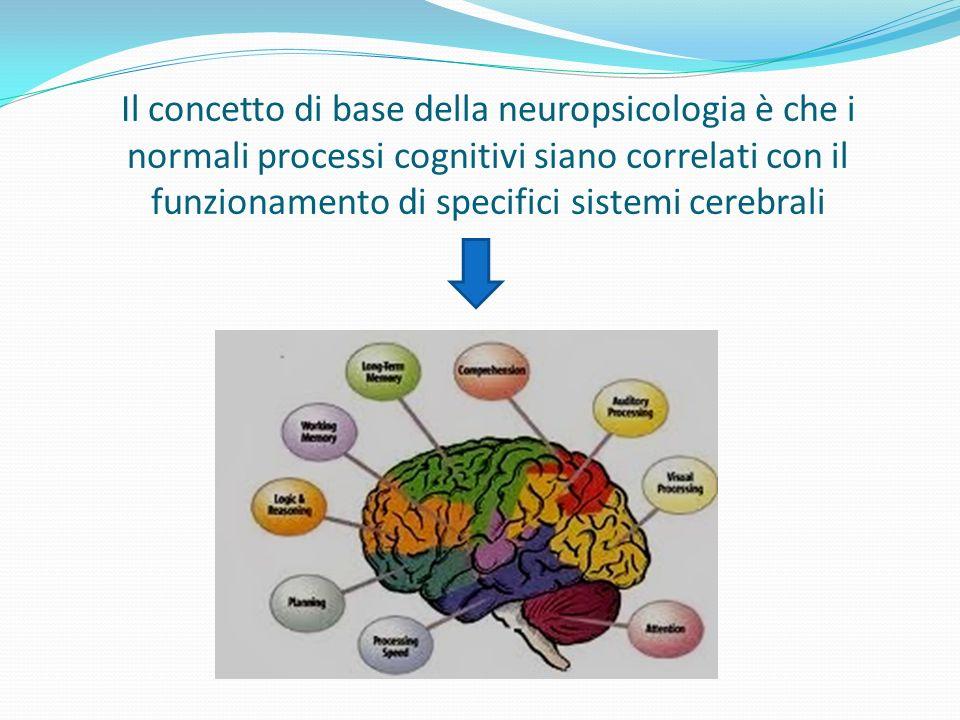 Il riconoscimento: Gnosie Capacità di riconoscere oggetti o altre classi di stimoli tramite i diversi canali sensoriali.