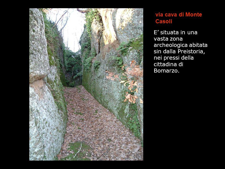 via cava di Monte Casoli E situata in una vasta zona archeologica abitata sin dalla Preistoria, nei pressi della cittadina di Bomarzo. And/ m