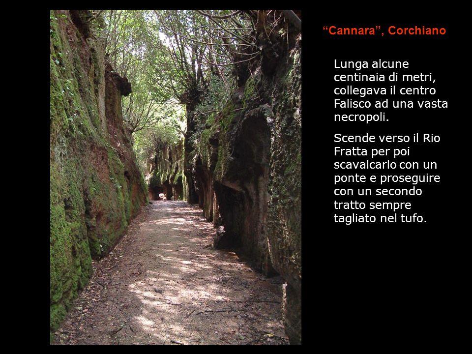 Cannara, Corchiano Lunga alcune centinaia di metri, collegava il centro Falisco ad una vasta necropoli. Scende verso il Rio Fratta per poi scavalcarlo