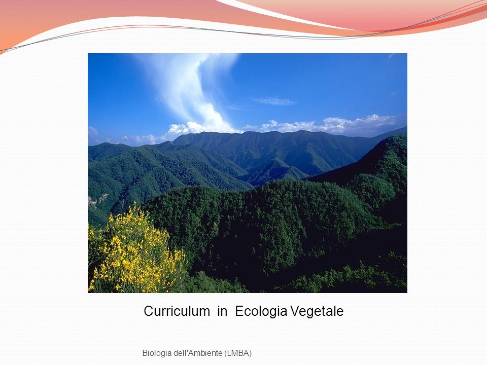 Curriculum in Ecologia Vegetale