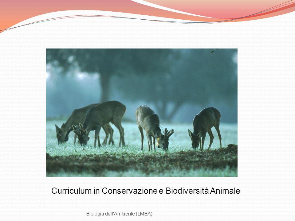 Biologia dell'Ambiente (LMBA) Curriculum in Conservazione e Biodiversità Animale