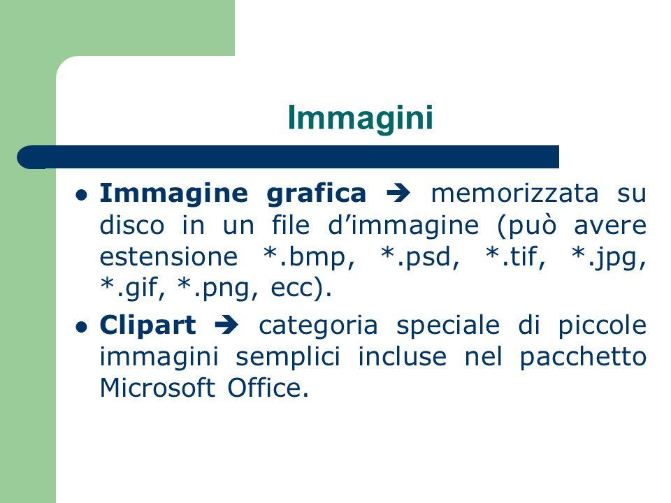 Immagini Immagine grafica memorizzata su disco in un file dimmagine (può avere estensione *.bmp, *.psd, *.tif, *.jpg, *.gif, *.png, ecc).