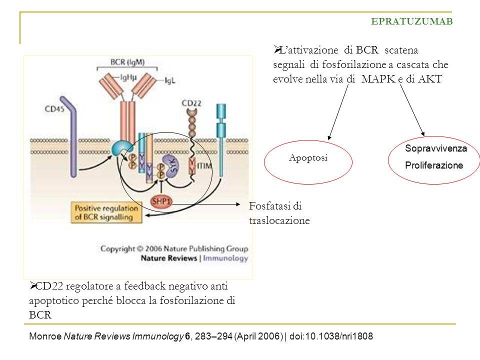 Monroe Nature Reviews Immunology 6, 283–294 (April 2006) | doi:10.1038/nri1808 EPRATUZUMAB CD22 regolatore a feedback negativo anti apoptotico perché