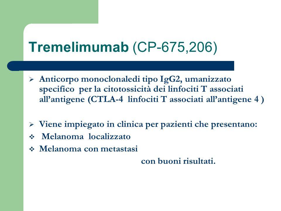 Tremelimumab (CP-675,206) Anticorpo monoclonaledi tipo IgG2, umanizzato specifico per la citotossicità dei linfociti T associati allantigene (CTLA-4 l