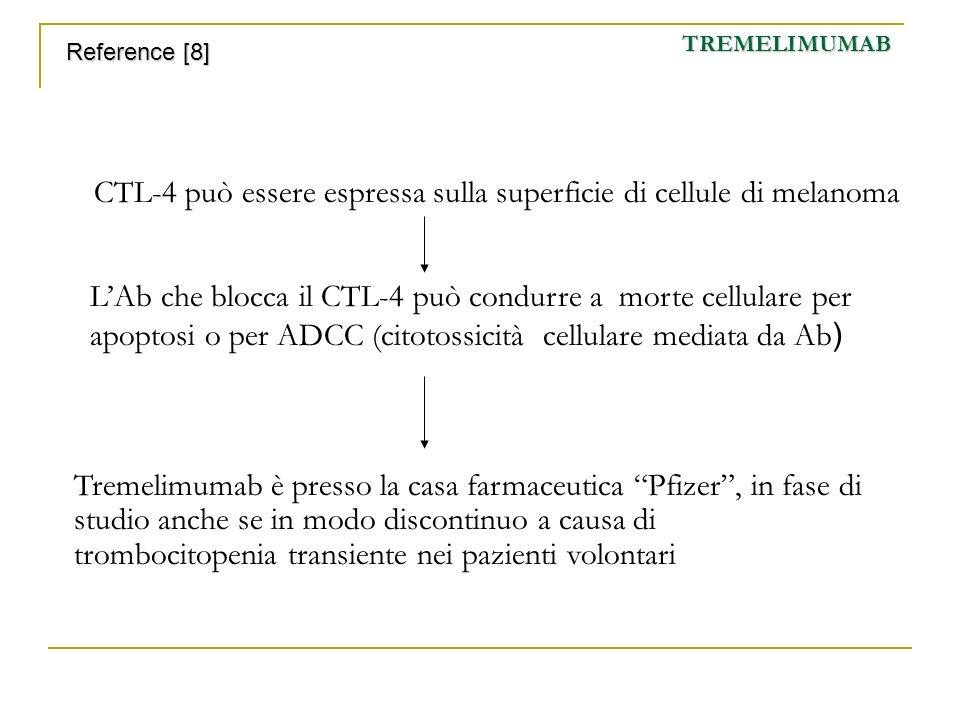 CTL-4 può essere espressa sulla superficie di cellule di melanoma LAb che blocca il CTL-4 può condurre a morte cellulare per apoptosi o per ADCC (cito