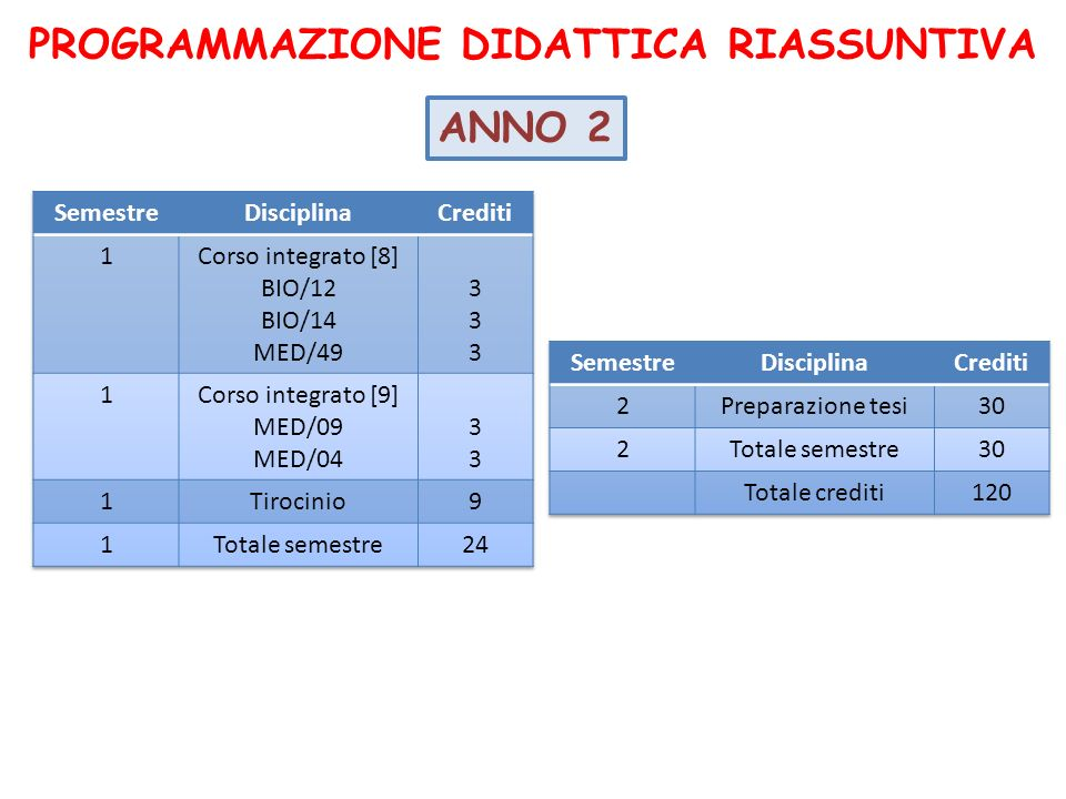 PROGRAMMAZIONE DIDATTICA RIASSUNTIVA ANNO 2