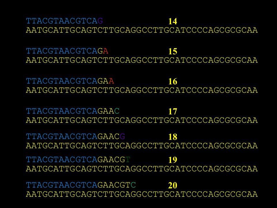 AATGCATTGCAGTCTTGCAGGCCTTGCATCCCCAGCGCGCAA TTACGTAACGTCAG 14 AATGCATTGCAGTCTTGCAGGCCTTGCATCCCCAGCGCGCAA TTACGTAACGTCAGA AATGCATTGCAGTCTTGCAGGCCTTGCATCCCCAGCGCGCAA TTACGTAACGTCAGAA AATGCATTGCAGTCTTGCAGGCCTTGCATCCCCAGCGCGCAA TTACGTAACGTCAGAAC AATGCATTGCAGTCTTGCAGGCCTTGCATCCCCAGCGCGCAA TTACGTAACGTCAGAACG AATGCATTGCAGTCTTGCAGGCCTTGCATCCCCAGCGCGCAA TTACGTAACGTCAGAACGT AATGCATTGCAGTCTTGCAGGCCTTGCATCCCCAGCGCGCAA TTACGTAACGTCAGAACGTC 15 16 17 18 19 20