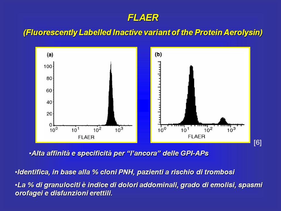 FLAER (Fluorescently Labelled Inactive variant of the Protein Aerolysin) Identifica, in base alla % cloni PNH, pazienti a rischio di trombosiIdentific