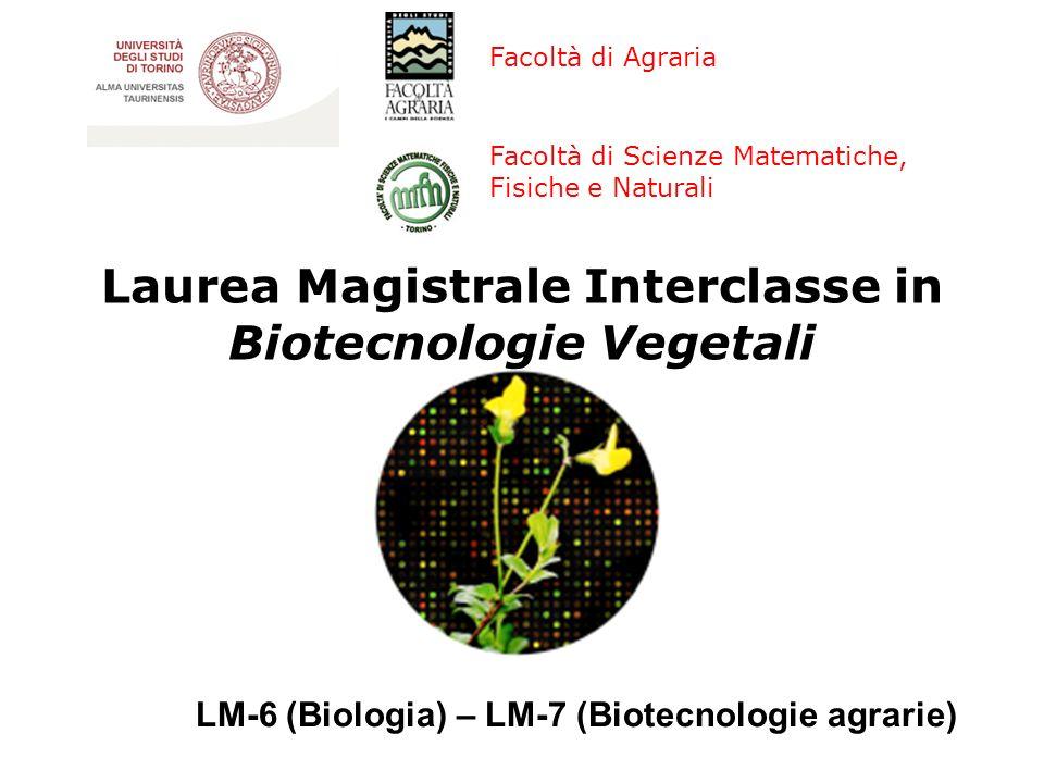Facoltà di Scienze Matematiche, Fisiche e Naturali Laurea Magistrale Interclasse in Biotecnologie Vegetali Facoltà di Agraria LM-6 (Biologia) – LM-7 (