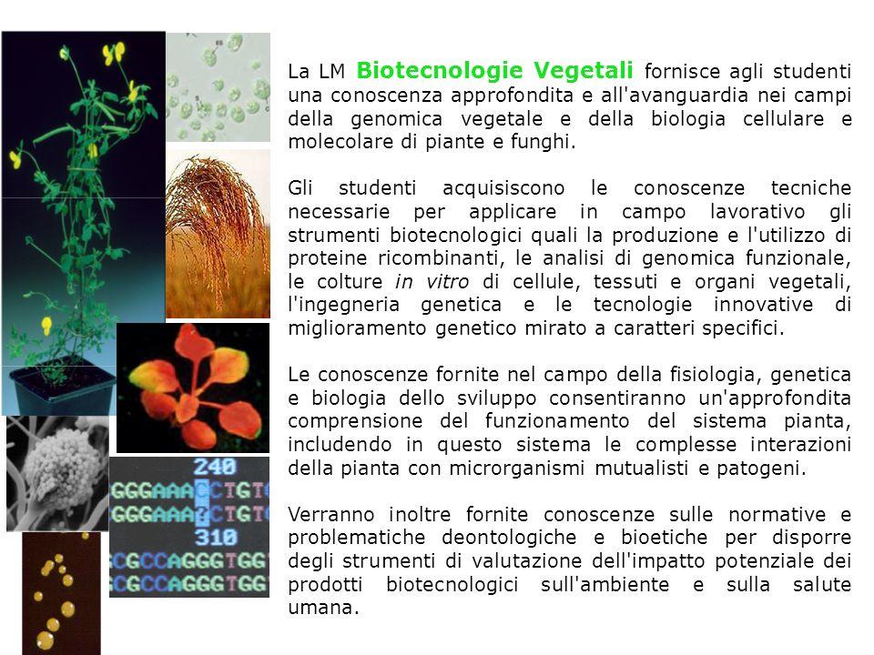 La LM Biotecnologie Vegetali fornisce agli studenti una conoscenza approfondita e all'avanguardia nei campi della genomica vegetale e della biologia c