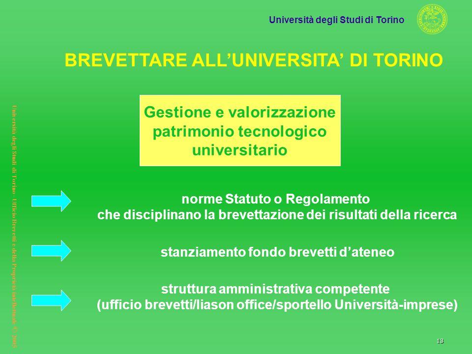 Università degli Studi di Torino Università degli Studi di Torino– Ufficio Brevetti e della Proprietà intellettuale © 2005 13 norme Statuto o Regolame