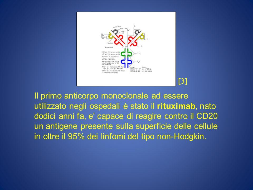 Il primo anticorpo monoclonale ad essere utilizzato negli ospedali è stato il rituximab, nato dodici anni fa, e capace di reagire contro il CD20 un an