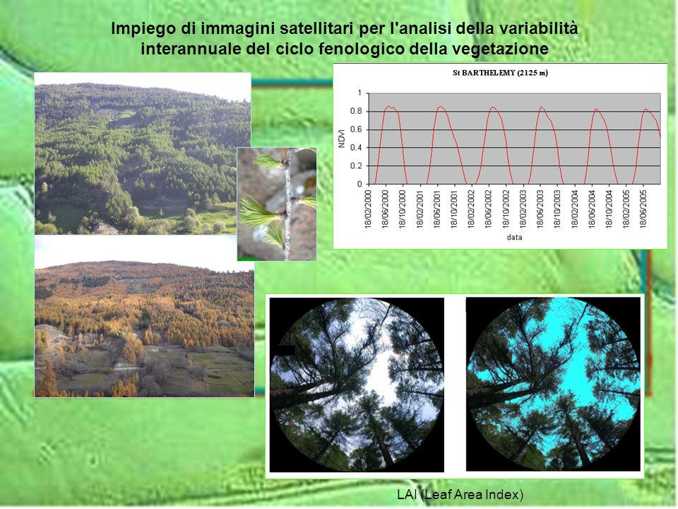 LAI (Leaf Area Index) Impiego di immagini satellitari per l'analisi della variabilità interannuale del ciclo fenologico della vegetazione