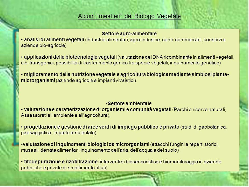Settore agro-alimentare analisi di alimenti vegetali (industrie alimentari, agro-industrie, centri commerciali, consorzi e aziende bio-agricole) appli