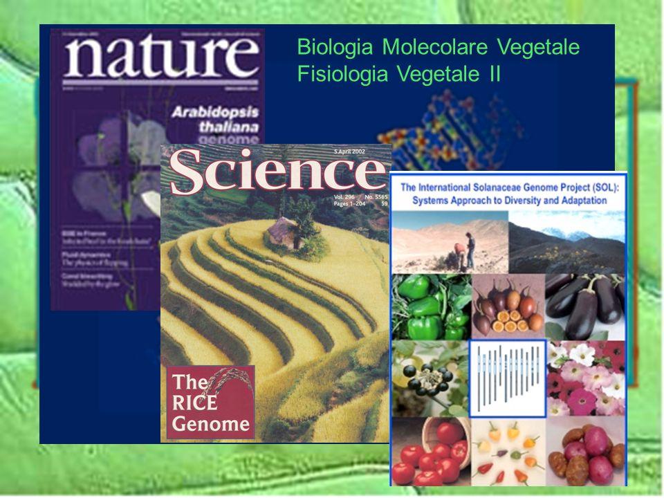 Biologia Molecolare Vegetale Fisiologia Vegetale II