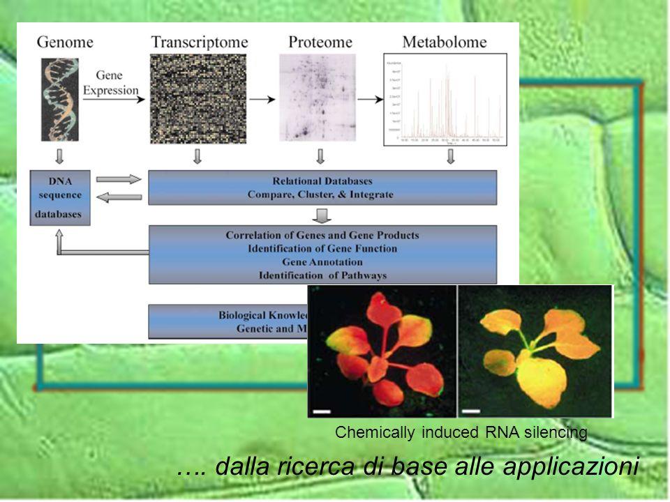 …. dalla ricerca di base alle applicazioni Chemically induced RNA silencing