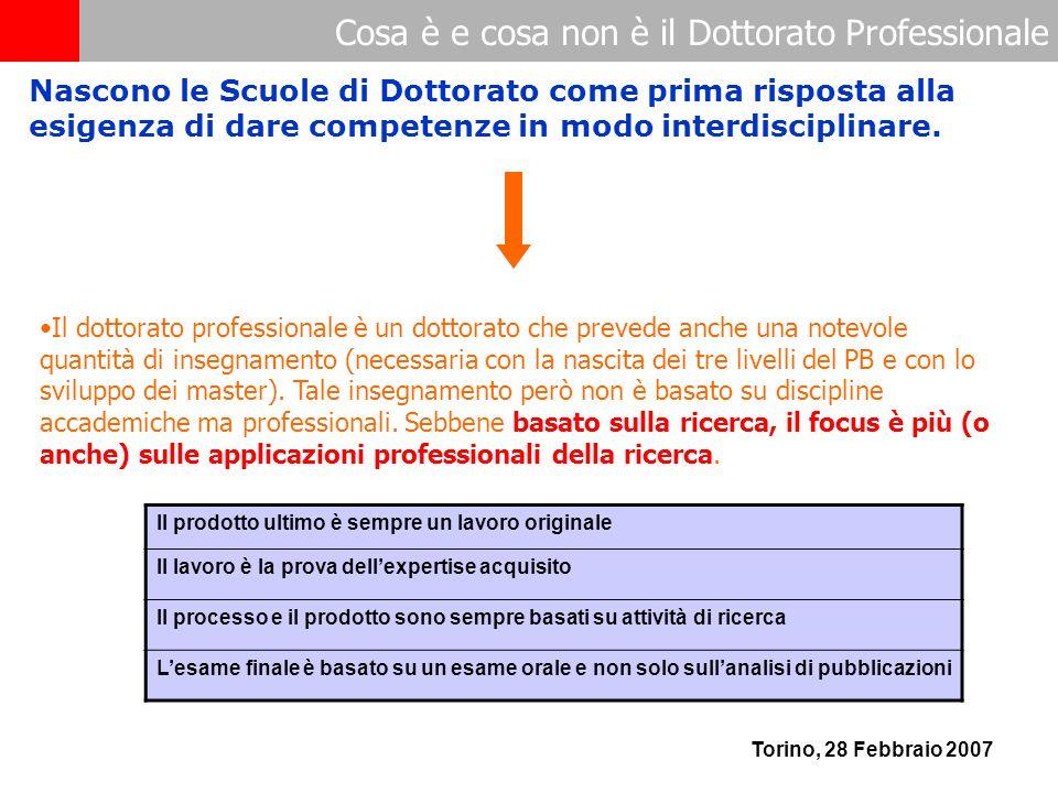Cosa è e cosa non è il Dottorato Professionale Torino, 28 Febbraio 2007 Il dottorato professionale è un dottorato che prevede anche una notevole quantità di insegnamento (necessaria con la nascita dei tre livelli del PB e con lo sviluppo dei master).