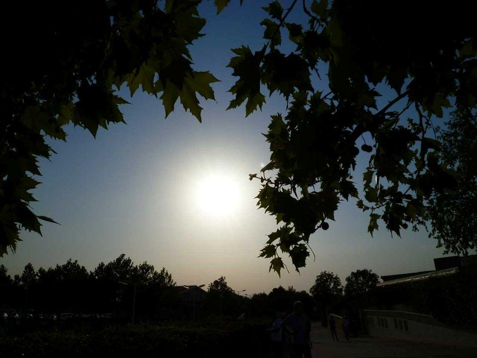 Gruppo di preghiera Regina Pacis di Campobasso 30 giugno – 7 luglio 2012