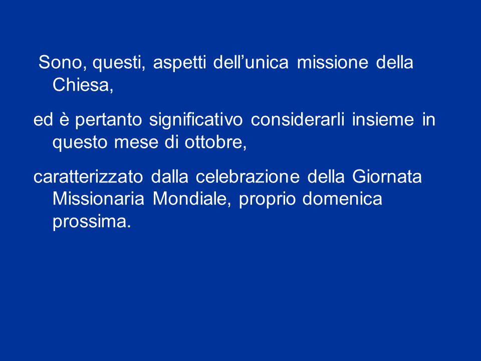 Egli, nella scia del Concilio Vaticano II e di colui che ne ha avviato lattuazione - il Papa Paolo VI – è stato infatti sia uno strenuo sostenitore de