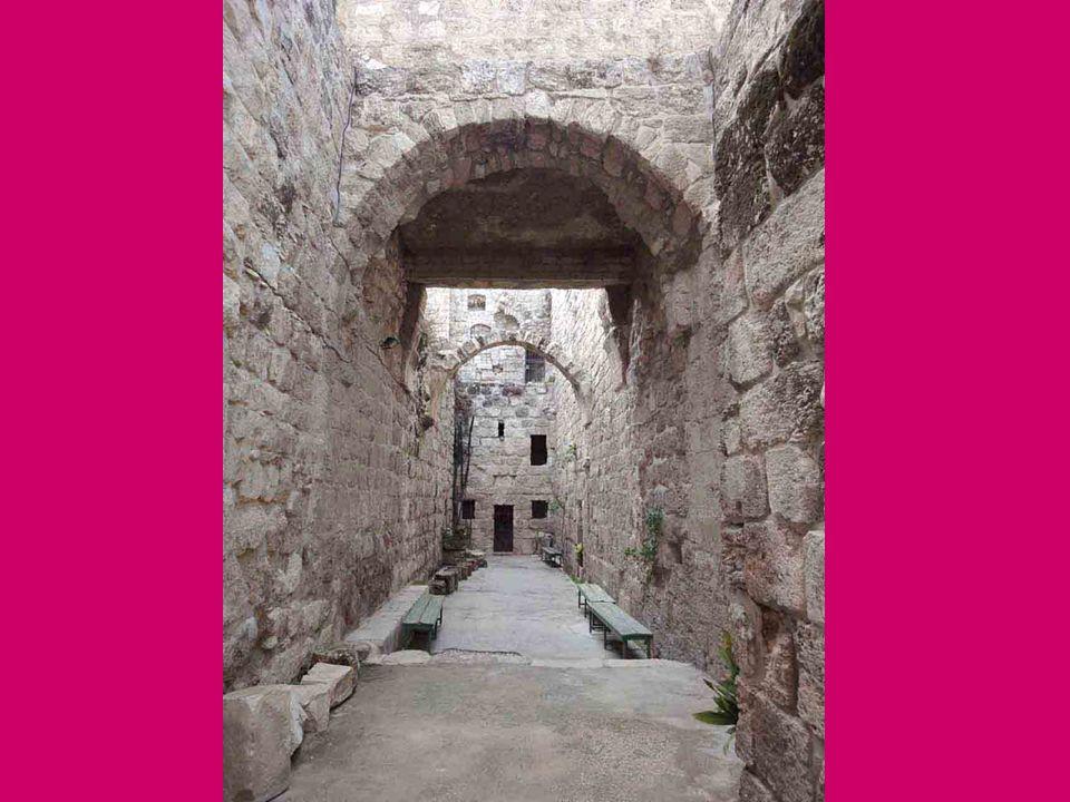 Così a Betania, vicino a Gerusalemme, Gesù si era legato con amicizia profonda con Lazzaro e le sue sorelle Marta e Maria.