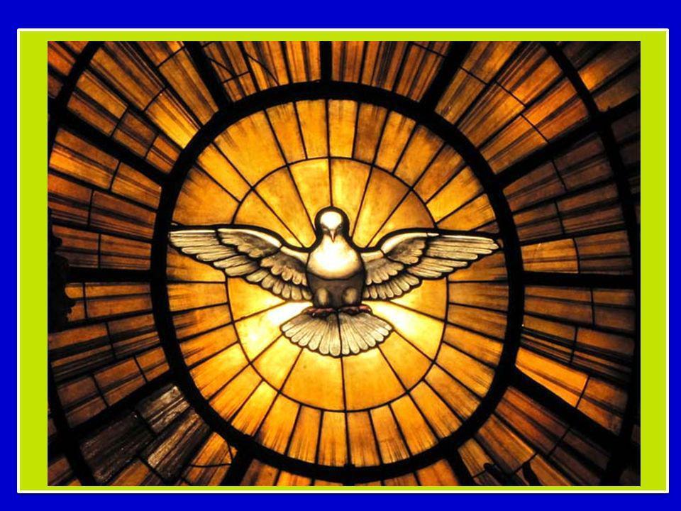 Il cammino di riflessione che stiamo facendo insieme in questAnno della fede ci conduce a meditare oggi su un aspetto affascinante dellesperienza umana e cristiana: luomo porta in sé un misterioso desiderio di Dio.