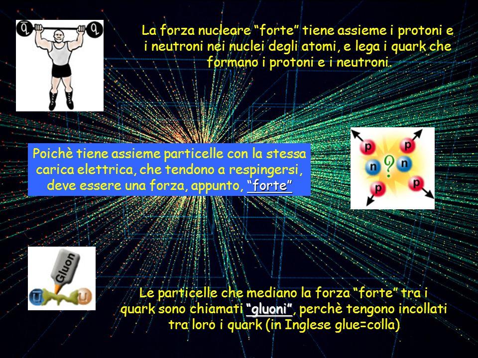 La forza nucleare forte tiene assieme i protoni e i neutroni nei nuclei degli atomi, e lega i quark che formano i protoni e i neutroni. Le particelle