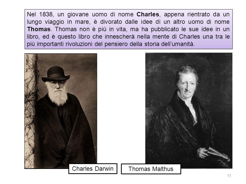 Nel 1838, un giovane uomo di nome Charles, appena rientrato da un lungo viaggio in mare, è divorato dalle idee di un altro uomo di nome Thomas. Thomas