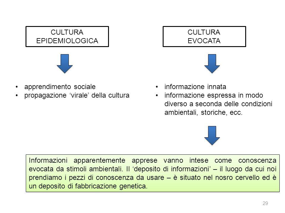 CULTURA EPIDEMIOLOGICA CULTURA EVOCATA apprendimento sociale propagazione virale della cultura informazione innata informazione espressa in modo diver