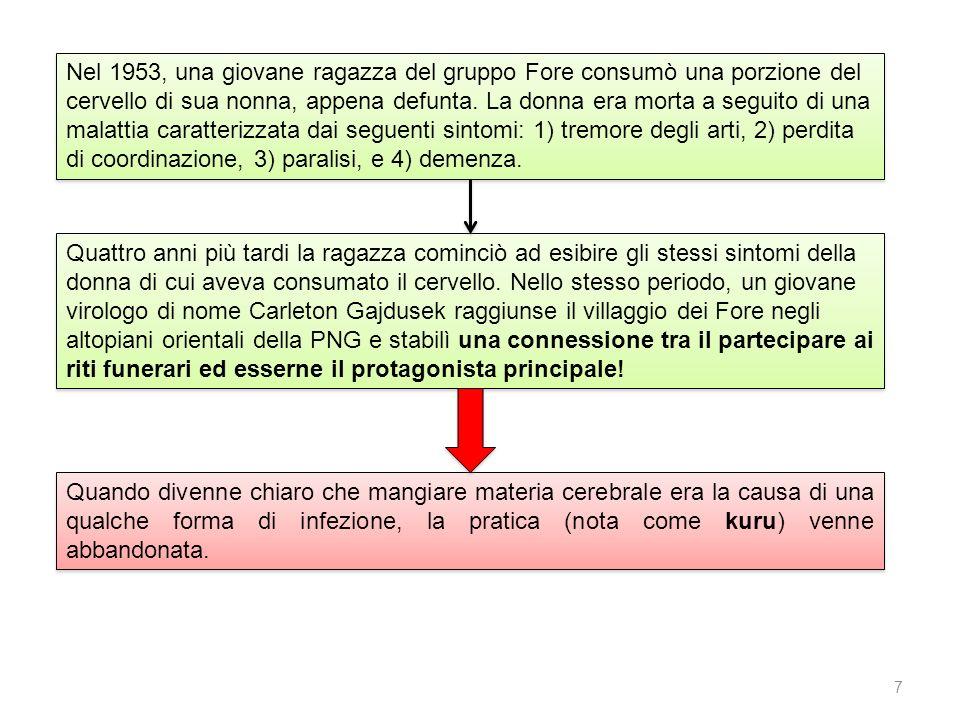 SCALADISPONIBILITÀ DI MATERIALE SCRITTO 5 Ortografia stabilita; tradizione letteraria: grammatiche, testi, dizionari, ecc.