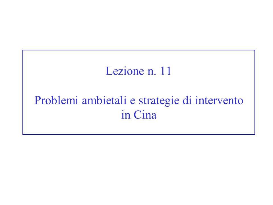 Lezione n. 11 Problemi ambietali e strategie di intervento in Cina