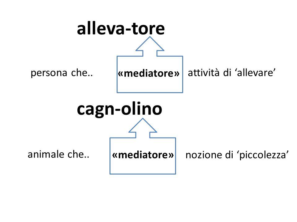 CONCETTI GRAMMATICALI Rappresentazioni della dimensione linguistica