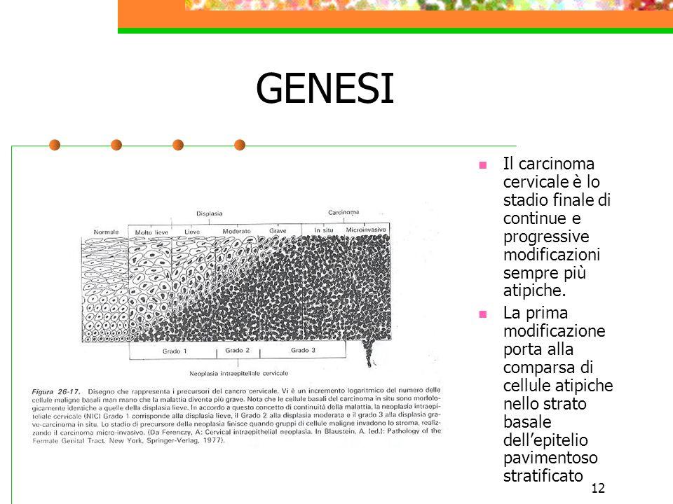 12 GENESI Il carcinoma cervicale è lo stadio finale di continue e progressive modificazioni sempre più atipiche. La prima modificazione porta alla com