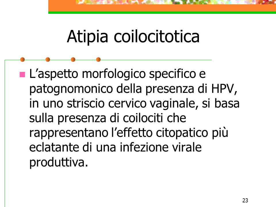 23 Atipia coilocitotica Laspetto morfologico specifico e patognomonico della presenza di HPV, in uno striscio cervico vaginale, si basa sulla presenza