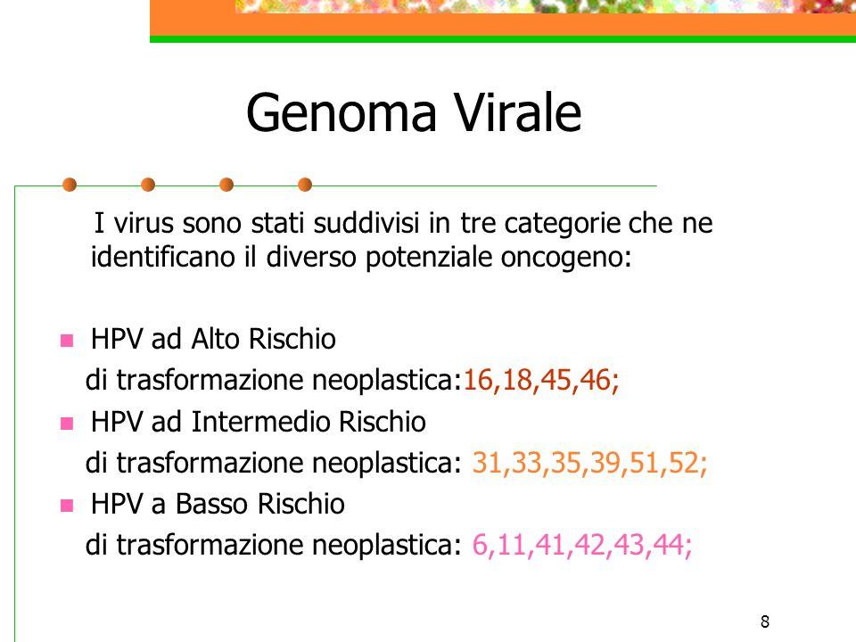 8 Genoma Virale I virus sono stati suddivisi in tre categorie che ne identificano il diverso potenziale oncogeno: HPV ad Alto Rischio di trasformazion