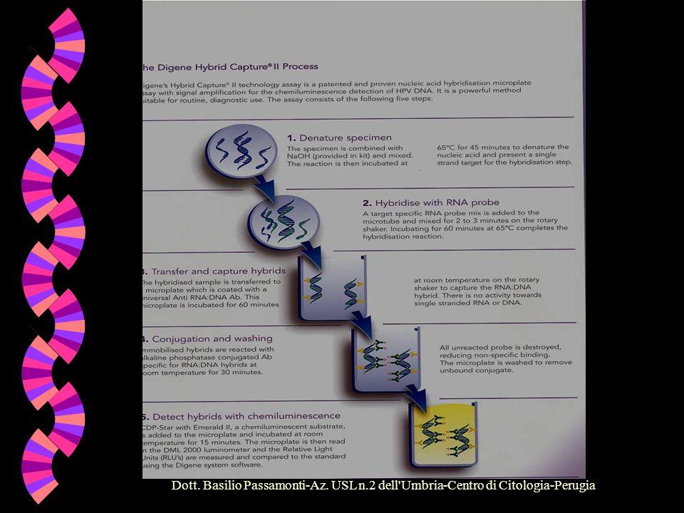 Dott. Basilio Passamonti-Az. USL n.2 dell'Umbria-Centro di Citologia-Perugia Dal Microscopio alla Biologia Molecolare w La tecnologia adottata utilizz