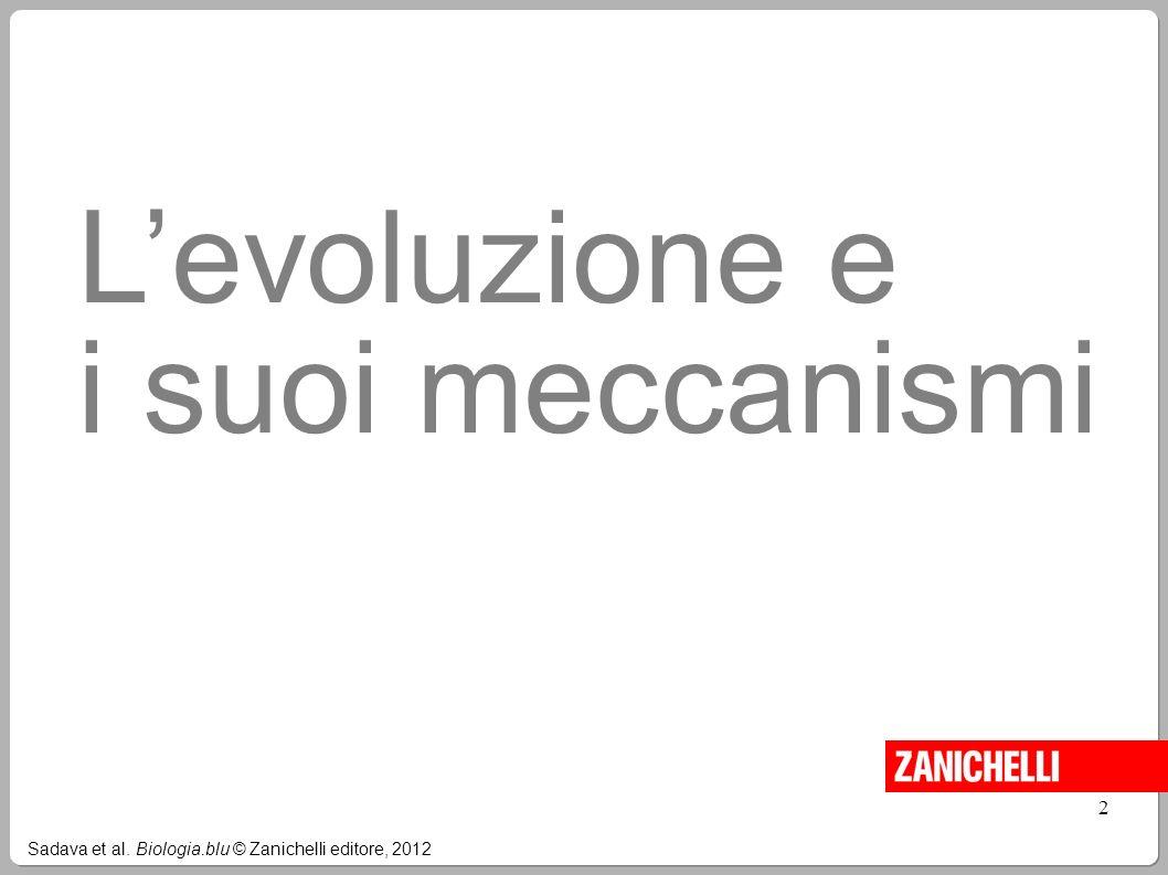 Sadava et al. Biologia.blu © Zanichelli editore, 2012 2 Levoluzione e i suoi meccanismi