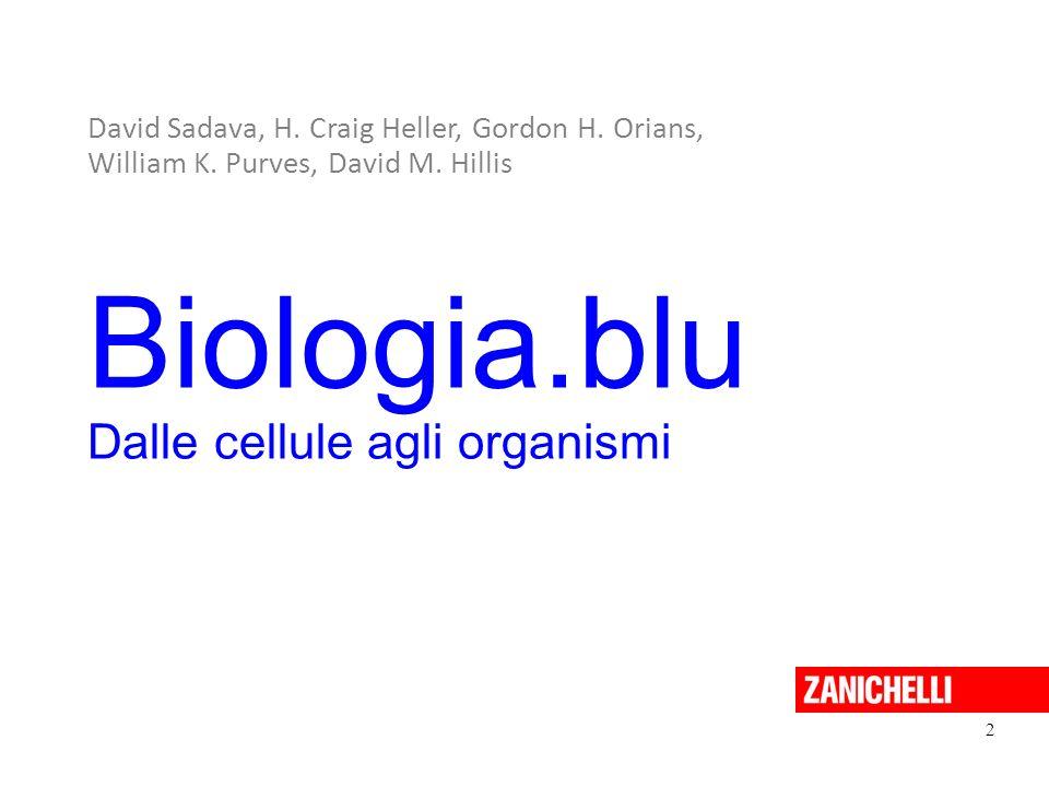 13 Il ciclo vitale dei muschi Sadava et al. Biologia.blu © Zanichelli editore 2011
