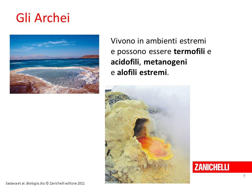 Gli Archei Vivono in ambienti estremi e possono essere termofili e acidofili, metanogeni e alofili estremi. 7 Sadava et al. Biologia.blu © Zanichelli