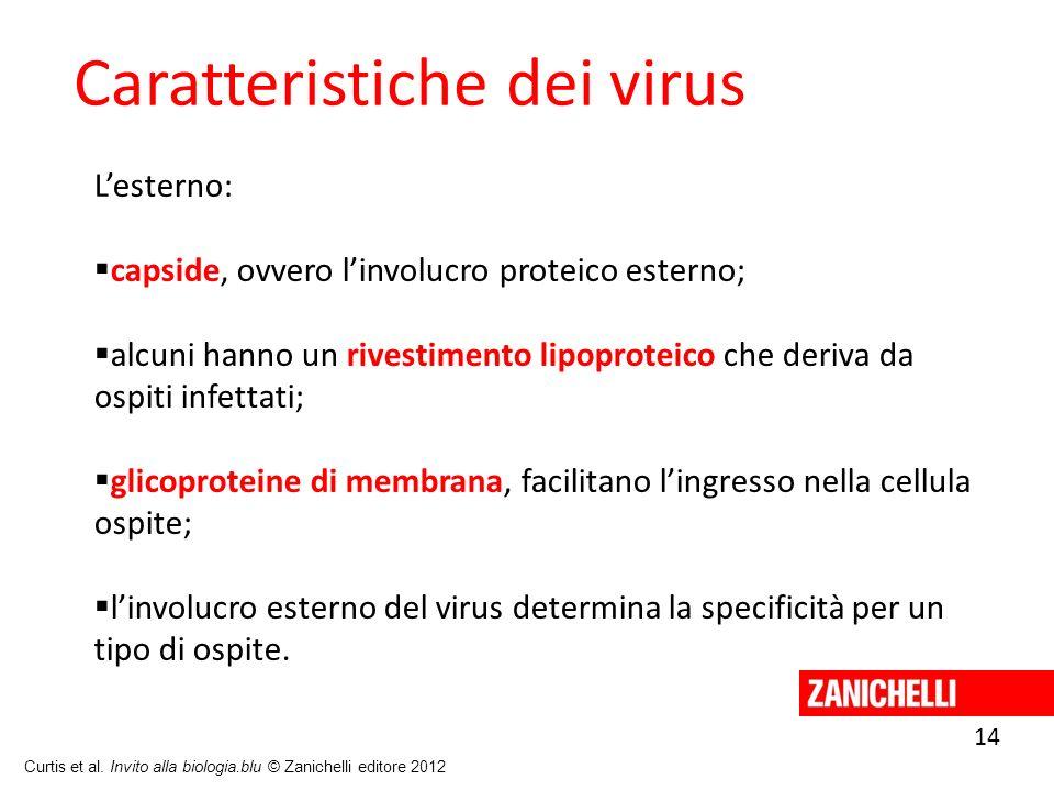 14 Curtis et al. Invito alla biologia.blu © Zanichelli editore 2012 Caratteristiche dei virus Lesterno: capside, ovvero linvolucro proteico esterno; a