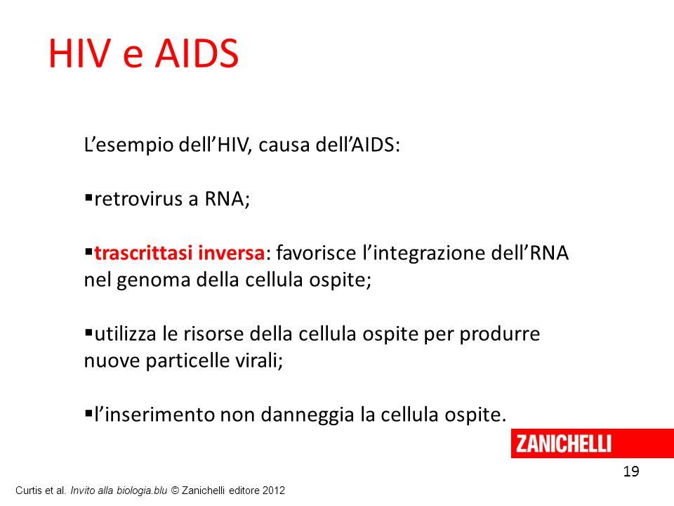 19 Curtis et al. Invito alla biologia.blu © Zanichelli editore 2012 HIV e AIDS Lesempio dellHIV, causa dellAIDS: retrovirus a RNA; trascrittasi invers