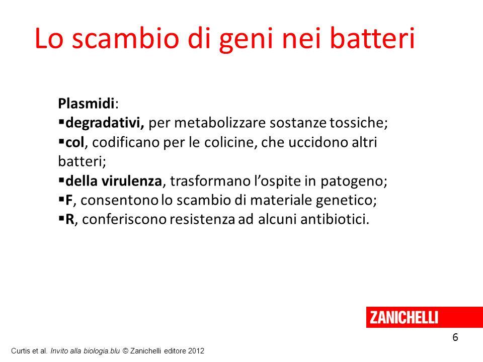 6 Curtis et al. Invito alla biologia.blu © Zanichelli editore 2012 Lo scambio di geni nei batteri Plasmidi: degradativi, per metabolizzare sostanze to